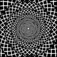 Retino- cortical lattice